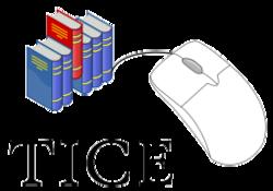 Logo_TICE